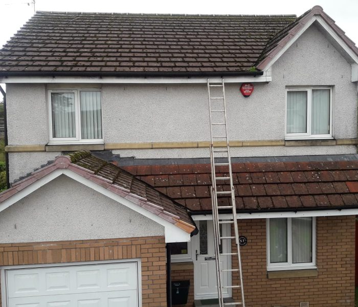 Roof Cleaning Newton Mearns Before