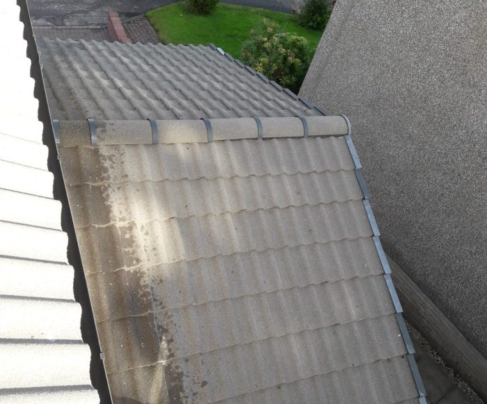Roof Tiles Cleaning After
