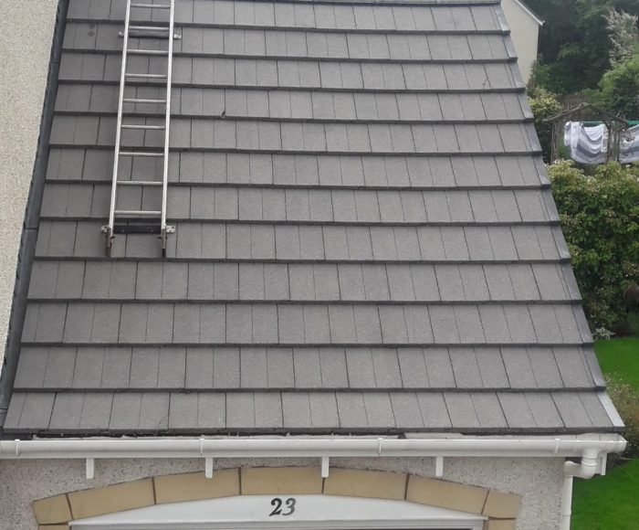 Roof Cleaning Greenloaning After